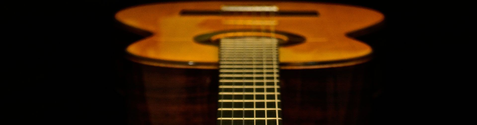 Specialists in classical concert guitars